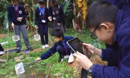 回歸自然的科學探索 校本課程革新系列的總結 ──大埔舊墟公立學校(寶湖道)校本課程革新系列四
