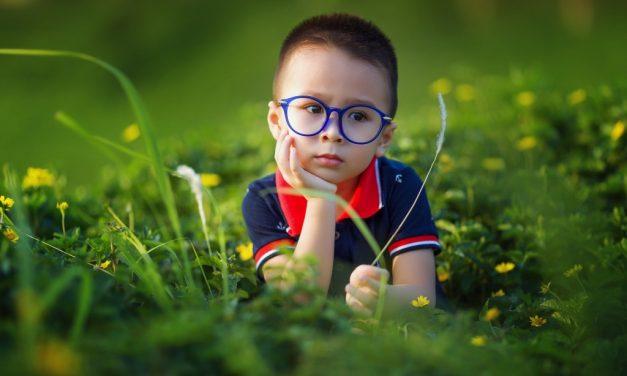 皮亞傑的理念 ——兒童認知四個發展階段