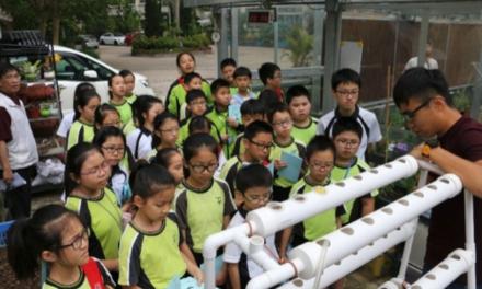 綠色及永續教育:聖文德天主教小學整全的環保培育